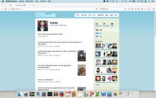Screenshot vom chinesischen Microbloggingservice fanfou